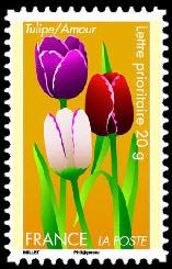 Dites le avec des fleurs ( tulipe )