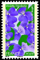 Dites le avec des fleurs ( violette )