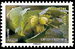 Des fruits pour une lettre verte, Noisettes