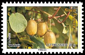 Des fruits pour une lettre verte, Kiwis