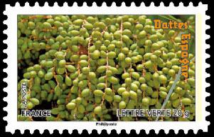 Des fruits pour une lettre verte, Dattes