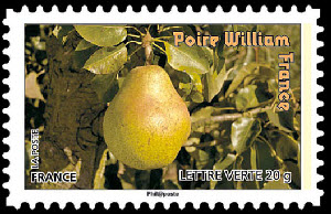 Des fruits pour une lettre verte, Poire William