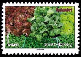 Des légumes pour une lettre verte, Salades