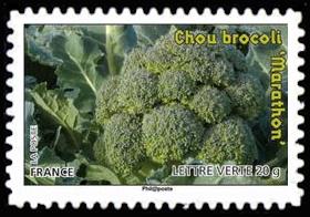 Des légumes pour une lettre verte, Chou brocoli
