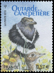 Outarde canepetière -Ligue de Protection des Oiseaux - LPO 1912-2012