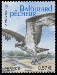 Balbuzard pêcheur - Ligue de Protection des Oiseaux - LPO 1912-2012