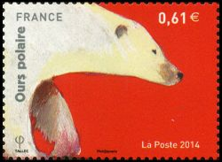 Les ours (Ours polaire)