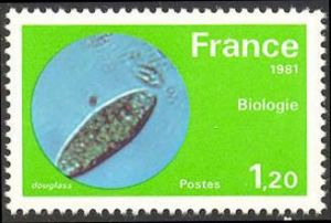 Biologie (micro organisme en évolution)