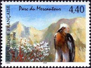 Nature de France, Parc du Mercantour, Le Gypaète barbu et la saxifrage