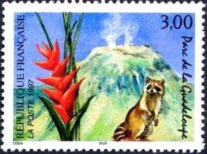 Parc de la Guadeloupe (volcan de la Soufrière), fleur de balisier et racoon (raton laveur)