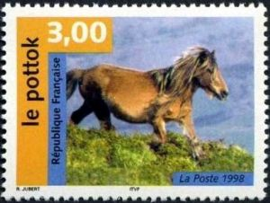 Nature de France : Chevaux, Le Pottok