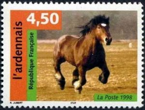 Nature de France : Chevaux, L´Ardennais