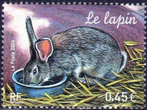 Nature de France : Animaux de la ferme, Le lapin